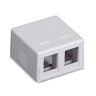 Black Box Connect RJ-45 Surface-Mount Housing - White, 2-Port