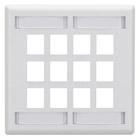 GigaStation Wallplate, 12-Port, Dual-Gang, White