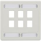 CAT6a F/UTP Faceplate, Dual-Gang, 6-Port, White