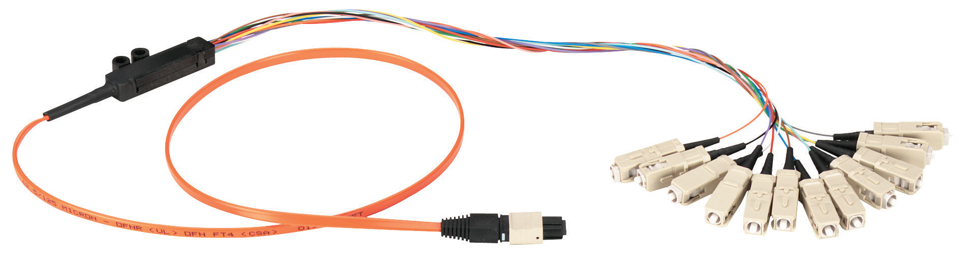 Mtp Fanout Cable 12 Strand 1 F To Mu M Custom Length Black Box Wiring 4 Quot Male Jack Additional Product Image