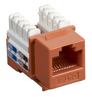 Connect CAT6 Keystone Jack - Unshielded, RJ45, Orange, 25-Pack