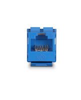 GigaTrue® 2 CAT6 Keystone Jack - Unshielded, 110 Punchdown Type, TAA, Blue