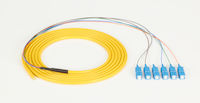 OS2 9-Micron Single-Mode Fiber Optic Pigtail - 6-Strand, OFNR, PVC, SC, Yellow, 3-m (9.6-ft.)