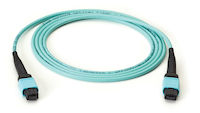 MTP OM3 Fiber Optic Trunk Cable - Plenum, 24-Strand, Straight-Pinned
