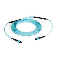 MTP OM3 Fiber Optic Trunk Cable - Plenum, 24-Strand, Type C