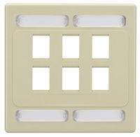 Wallplate Plastic Double-Gang 6-Port Ivory